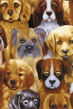 Fabric Timeless Treasures Puppy Dogs brown C9819