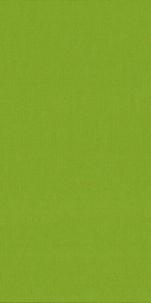 Fabric Makower 2000/G66 Plain Pistachio