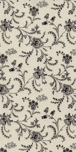 Fabric Timeless Treasures Viney floral White C4783