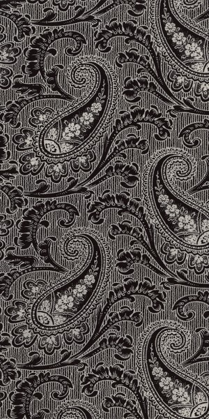 Fabric Timeless Treasures Black Paisley C4784