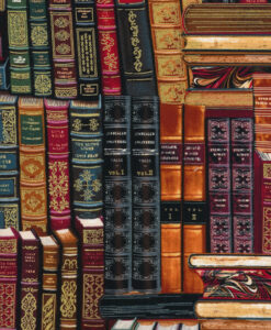 Fabric Timeless Treasures Metallic Books CM8214
